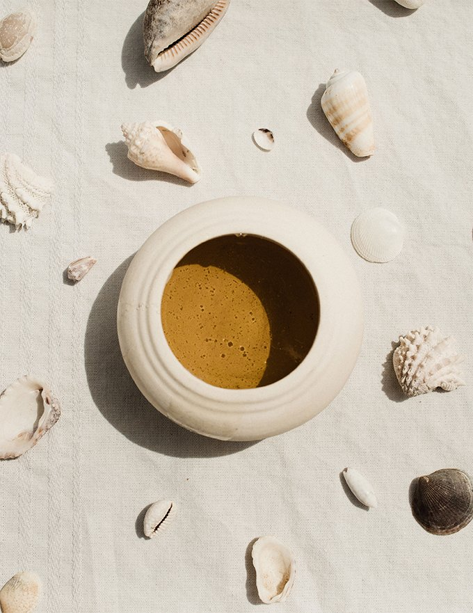 pot of honey surrounded by shells